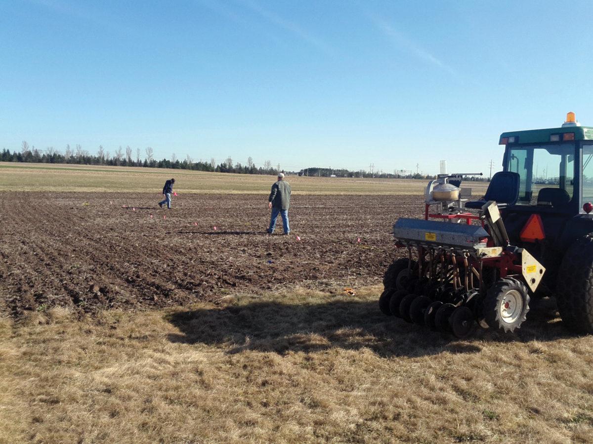 Barley Trial Planting