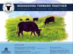 Beef-to-School-Project-Case-Study-Report.jpg