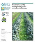 Cover Crop in Organic Systems--Oregon Implementation Guide Cover