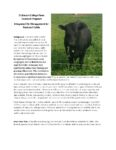 cover for Fly IPM Fact Sheet for Pastured Cattle guide